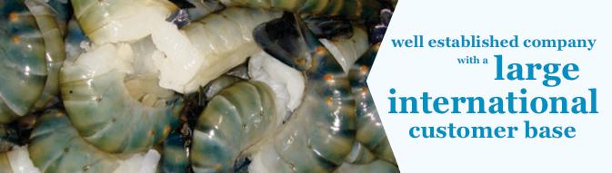 Seafoods Traders UK - Scallops, Prawns, Lobsters, Langoustine